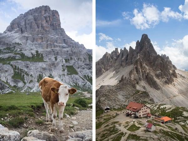 Dolomites tall combo
